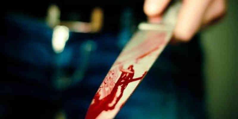 Morre filhote que apareceu mutilado na Turquia