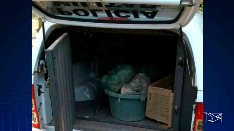Dois homens são presos em flagrante com animais silvestres no Maranhão
