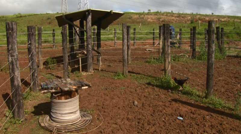 Polícia investiga série de sequestros no centro de zoonoses de Poços de Caldas, MG