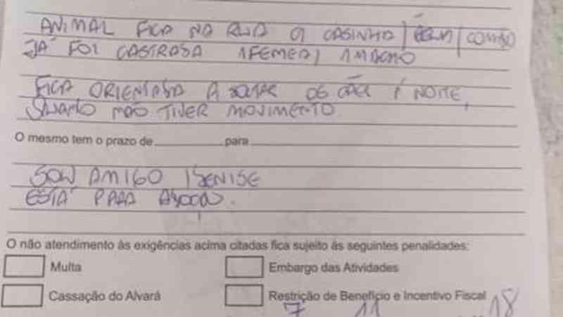 Moradora é denunciada por vizinhos e autuada pela Prefeitura por ajudar cães abandonados, em Cascavel, PR
