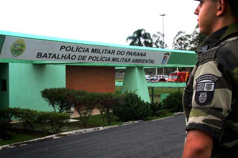 44 pessoas são detidas durante uma rinha de galos em São José dos Pinhais, PR