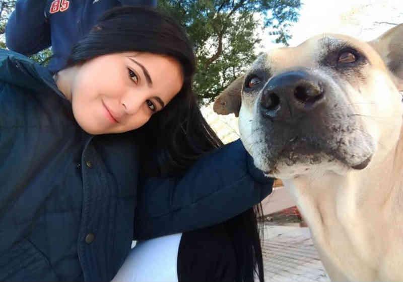 Jovem brasileira adota cachorro de Buenos Aires e história se torna viral