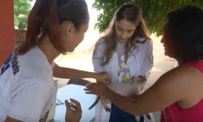 Vacinação antirrábica mobilizou a população de Porto Velho, RO