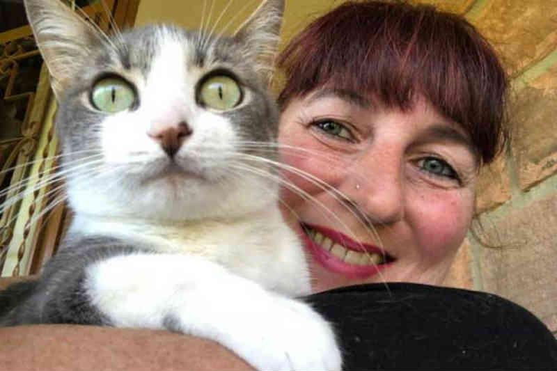 ONG Salve Um Gatinho fez 261 resgates de animais em três anos em Santa Cruz do Sul, RS