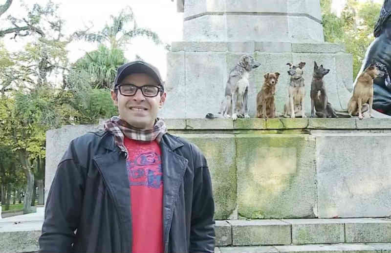 Adestrador treina cães de rua em Rio Grande (RS): 'Eles querem o nosso carinho'