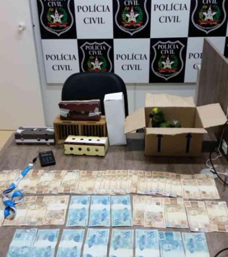 Homem é preso por tráfico e maus-tratos a animais silvestres em Criciúma, SC