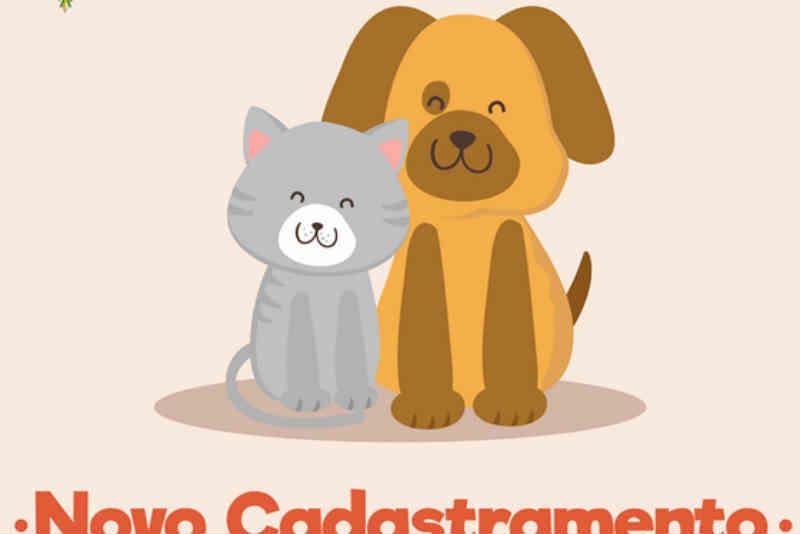 Novo cadastramento para castração de cães e gatos em Ilha Comprida, SP