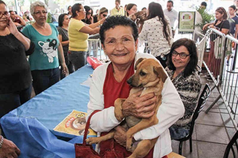 Itapevi (SP) realiza feira de adoção de cães e gatos no Ita Shopping