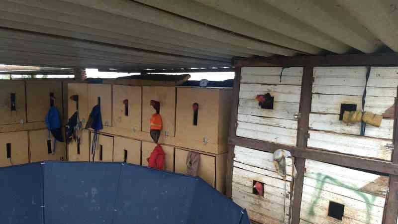 Aves em caixas que caracteriza maus-tratos (Foto: Divulgação Polícia Militar Ambiental)