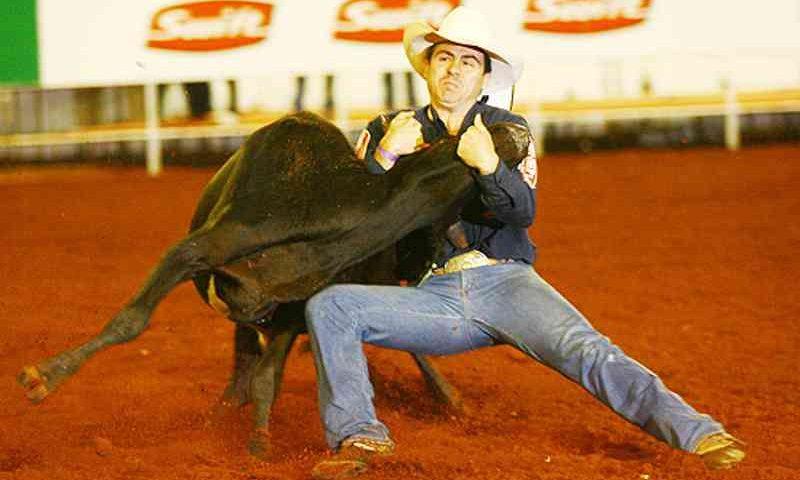 O peão César Brosco derrubando bezerro na prova em que lesionou a coluna do animal, que teve que ser sacrificado.
