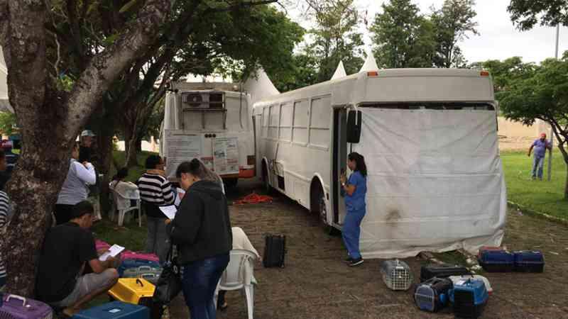 Castração de cães e gatos foi realizada pela Zoonoses em Salto, SP