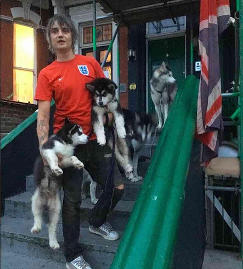 O músico Pete Doherty com seus cães (Foto: Instagram)