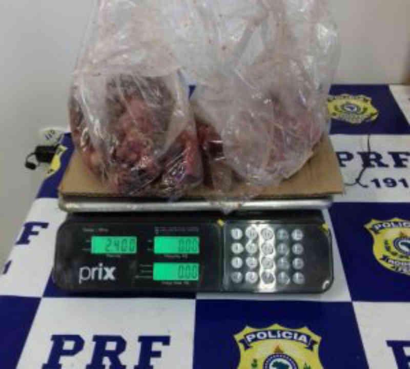 Homem é detido pela PRF transportando carne de jabuti em RO
