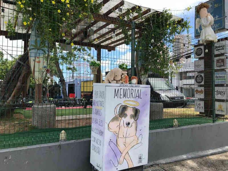 Cadela 'Manchinha' ganha memorial em Fortaleza, CE