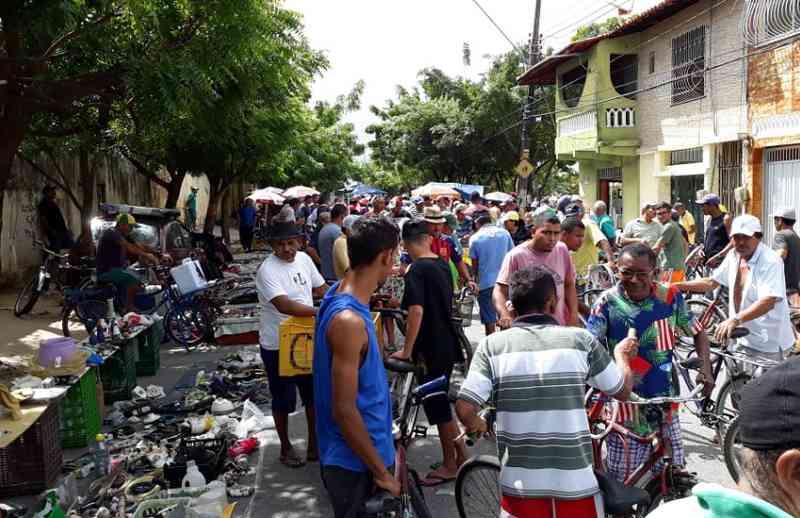 Operação flagra comércio ilegal de animais silvestres em Fortaleza, CE