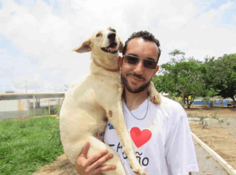 DF tem 7 denúncias de maus-tratos a animais por dia; saiba como ajudar