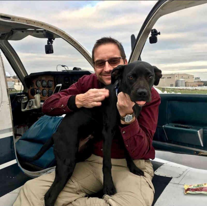 Homem compra avião e aprende a pilotar para salvar cachorros