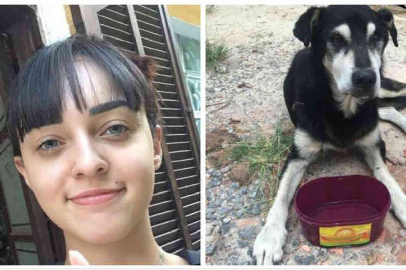 Estudante dá dica para ajudar os cães de rua no verão e viraliza