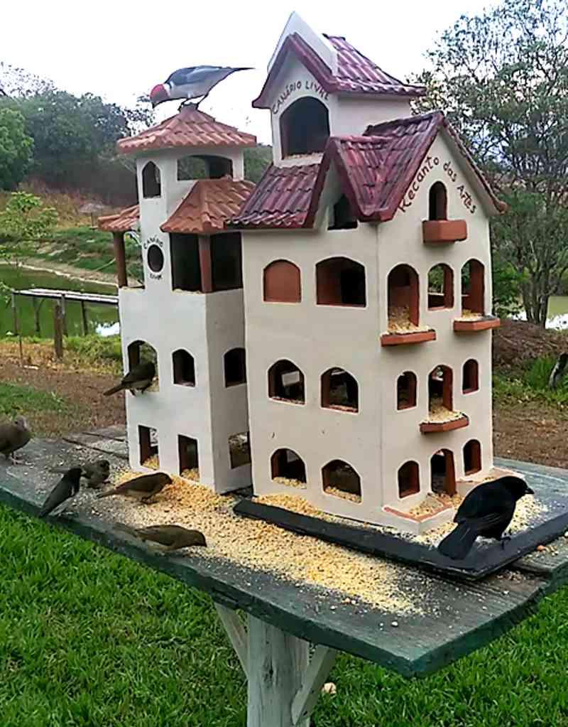Ao invés de gaiolas, casas para os pássaros