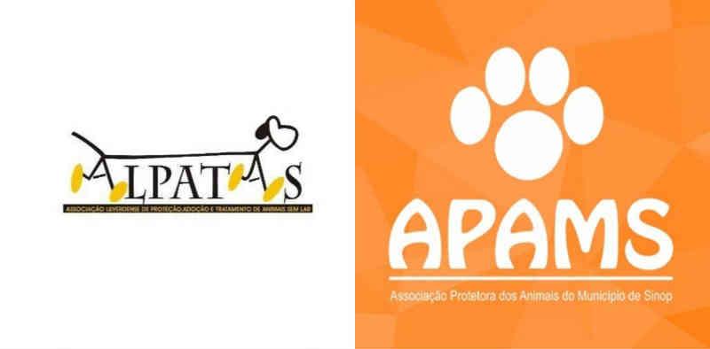 Associações protetoras de animais sem lar buscam ajuda para se manter, em MS