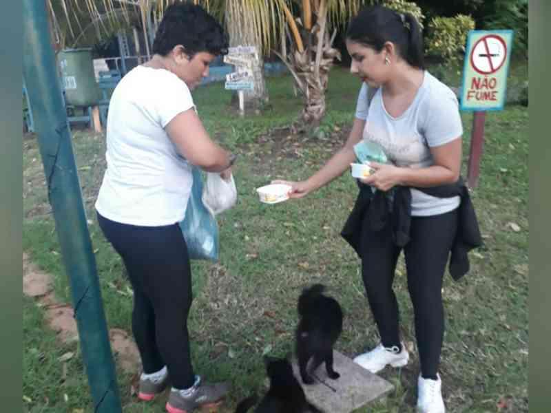 Jovens organizam mutirão para alimentar animais de rua em Santarém, PA