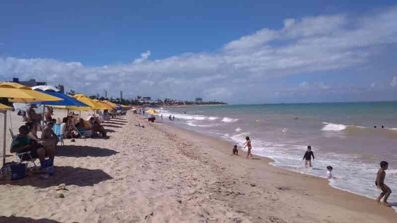 Golfinho é encontrado morto em praia de João Pessoa, PB