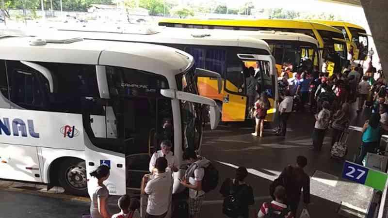 Após morte de cachorro em ônibus, governador da Paraíba sanciona lei do transporte de animais