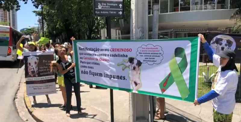 Ativistas fazem protesto no Recife por causa de maus-tratos contra animais