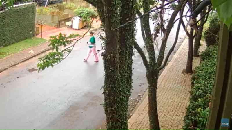 Revoltante: câmeras flagram animais sendo abandonados em Cascavel, PR