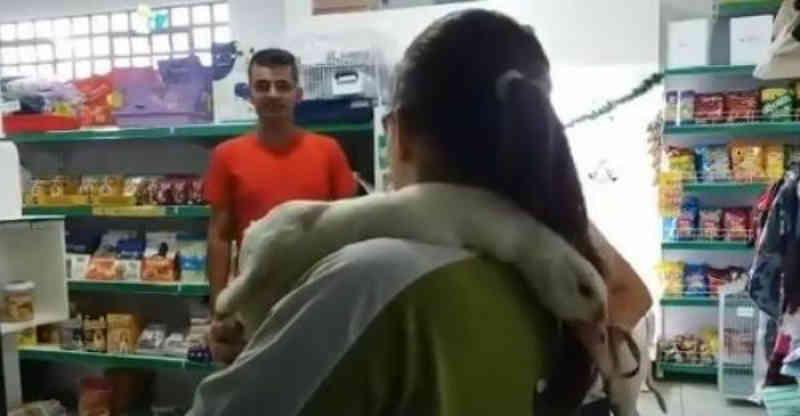 Em Ponta Grossa, ganso de estimação tem pescoço quebrado por assaltantes
