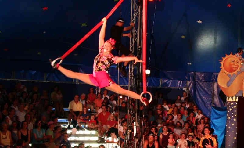 'Braga para Todos' apela aos bracarenses para irem ao circo sem animais em Portugal