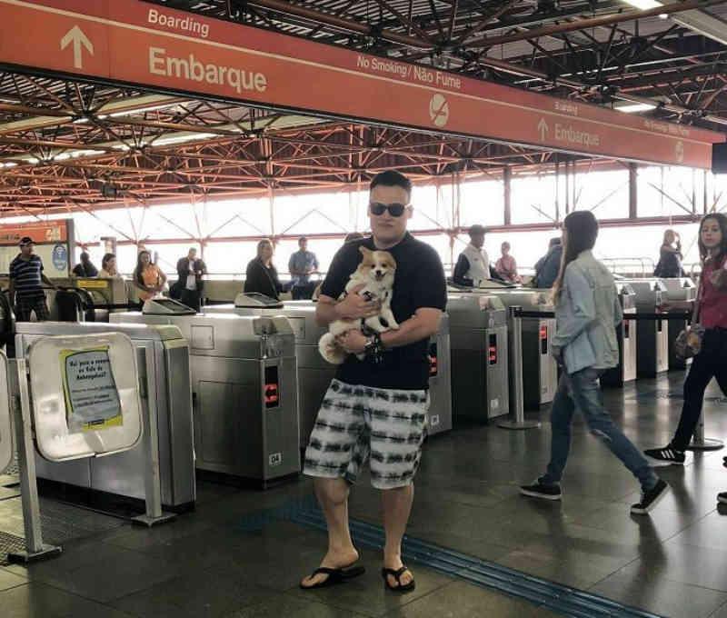Publicitário reivindica aprovação de lei para transitar com animais de estimação no transporte público