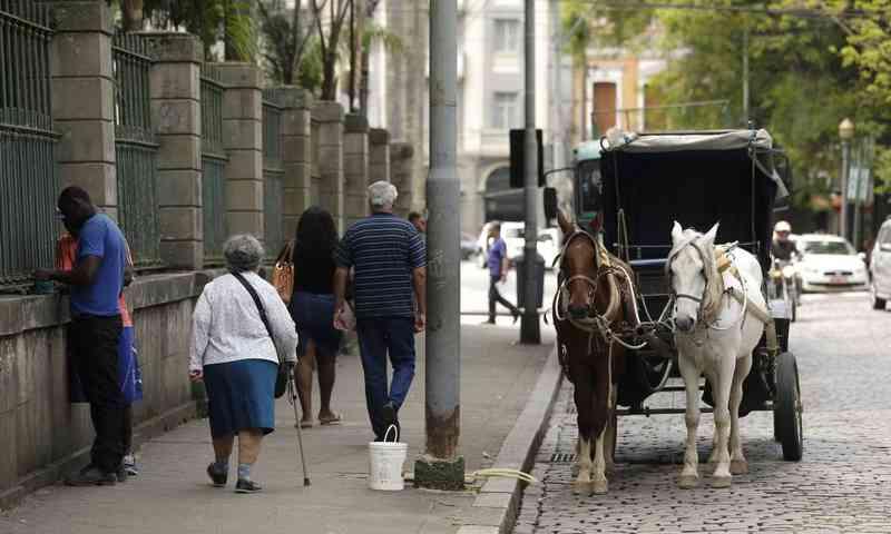 Fim das charretes com tração animal em Petrópolis (RJ) ainda não tem data