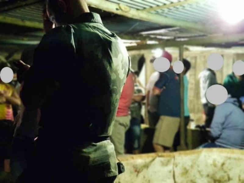 Polícia Ambiental autua 25 envolvidos em rinha de galo e apreende animais em Mondaí, SC