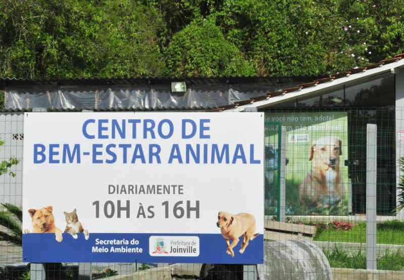 Centro de Bem-Estar Animal de Joinville (SC) permanecerá interditado até fevereiro de 2019