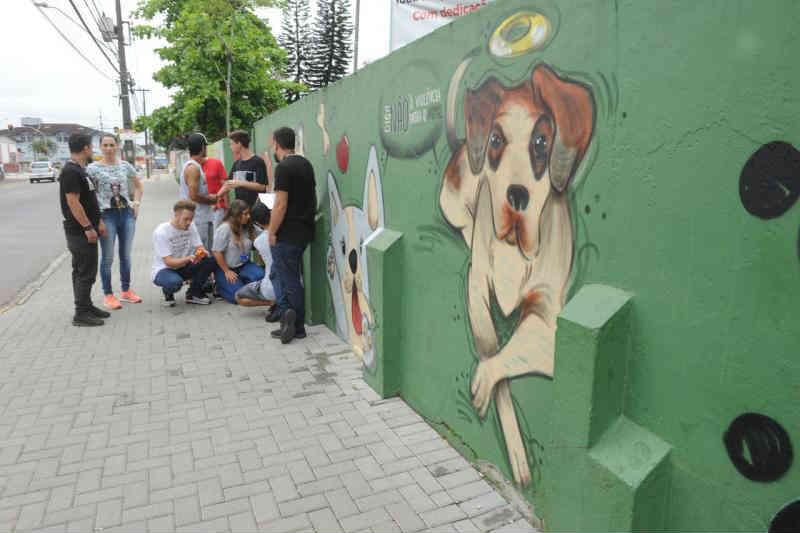 Estudantes criam Petstop em escola para cuidar de animais abandonados em Joinville, SC
