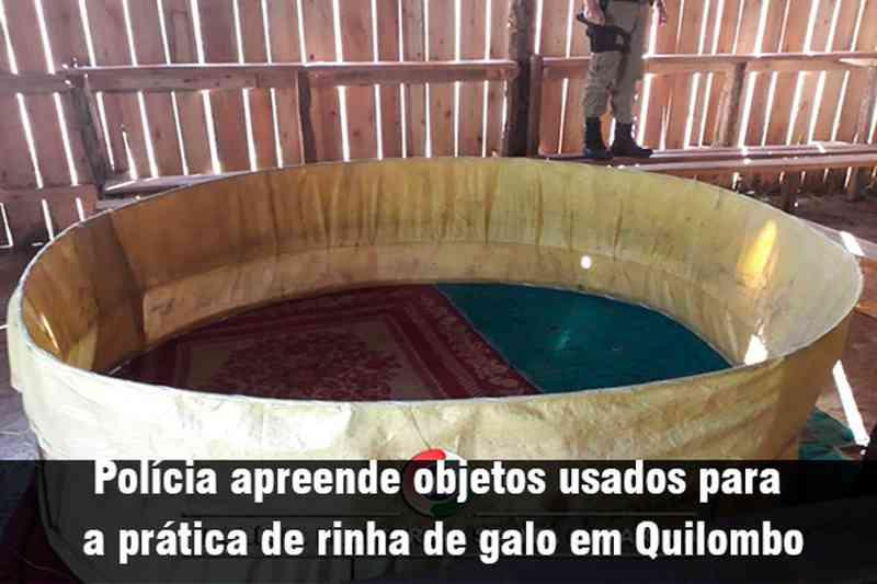 Polícia apreende objetos usados para a prática de rinha de galo em Quilombo, SC