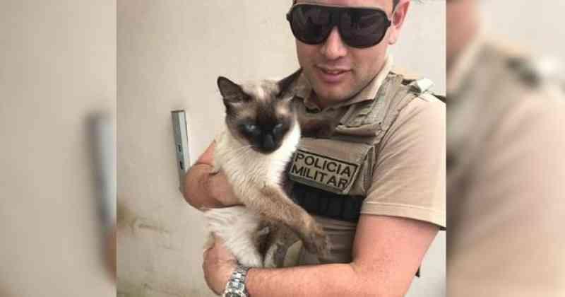 Policiais resgatam gato que estava preso sem comida em uma casa há três dias em Tijucas, SC