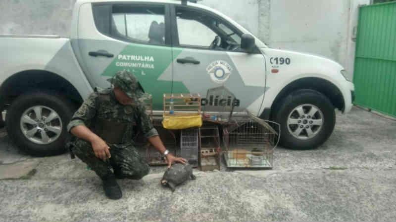 Animais são resgatados e moradores são multados em R$ 4,5 mil em Iguape, SP