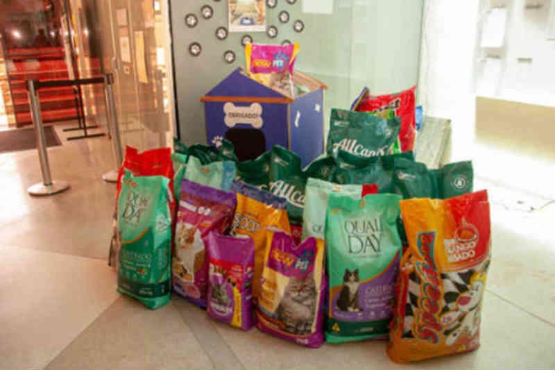 Câmara de Limeira (SP) arrecada 300 kg de ração para cães e gatos