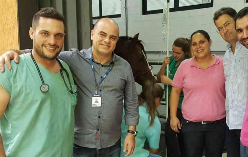 Prefeitura e Unimar: animais de grande porte resgatados vítimas de maus-tratos ou acidentes serão tratados no Hospital Veterinário, em Marília, SP