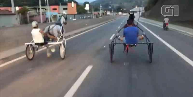 Polícia culpa dupla que fez racha com cavalos em rodovia por maus-tratos em Mairinque, SP