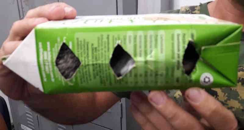 Dupla é detida ao vender macaco por R$ 600 na web e entregá-lo em caixa de leite