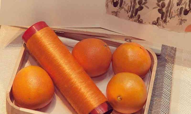 A seda vegana feita de bagaço de laranja é usada na Itália em artigos de luxo - Crédito: Reprodução/Instagram@orangefiberbrand