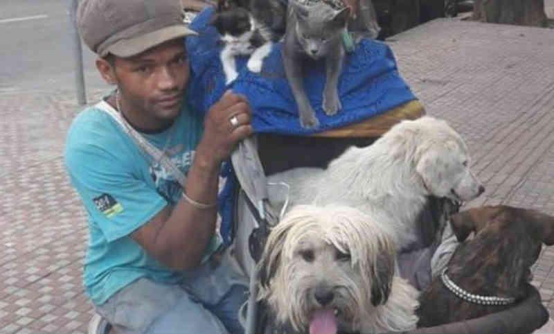 Catador de Belo Horizonte (MG) emociona ao impedir assassinato de cães e gatos: 'É um anjo'