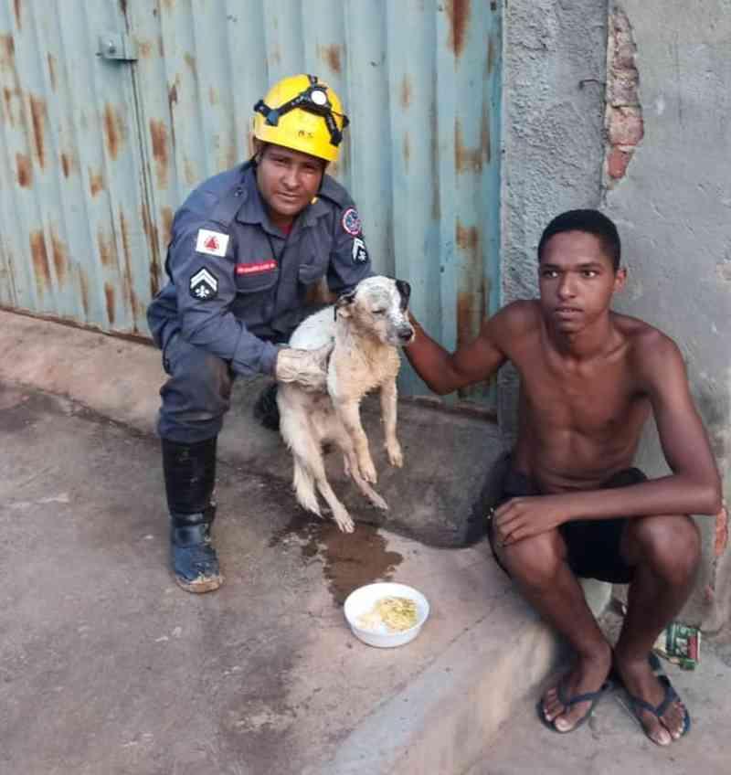 Animal foi resgatado de uma cisterna e entregue sem ferimentos ao morador — Foto: Corpo de Bombeiros/Divulgação