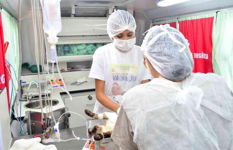 O hospital somará com as ações que já vêm sendo desenvolvidas no CCZ, como o serviço de castração de cães e gatos.