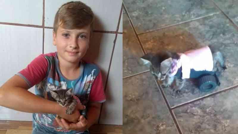 Menino de 9 anos faz carrinho para gato andar novamente e emociona a todos; vídeo