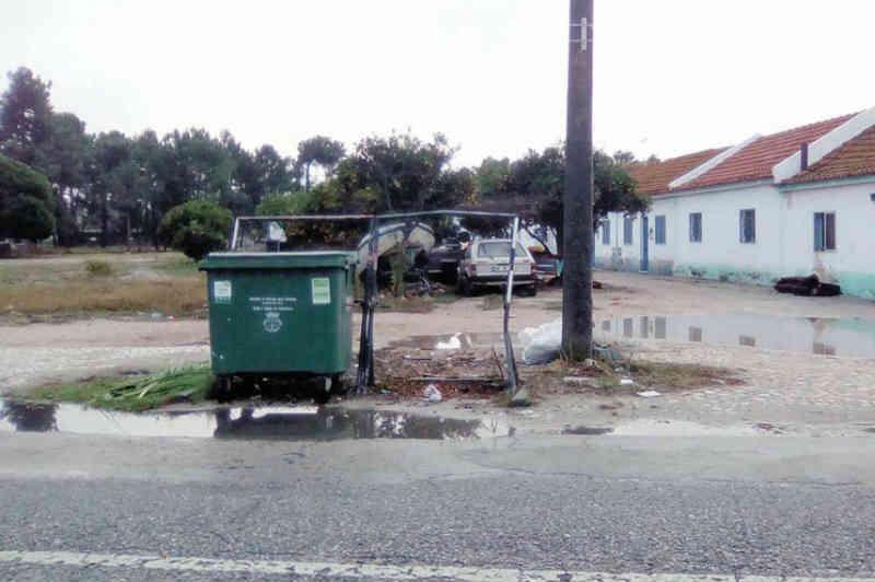 Portugal: Condenado por esventrar cadela mais perto da prisão