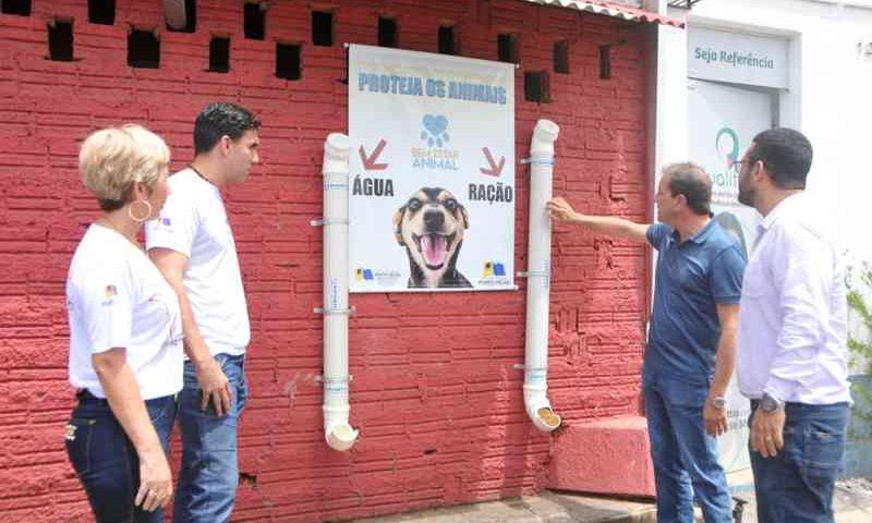 Objetivo é disponibilizar água e ração aos animais de rua na capital